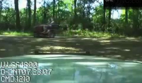 lawnmower-taser.jpg