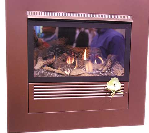 mantis-fireplace.jpg