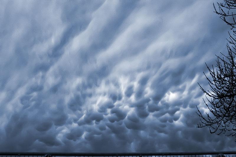 charles i. letbetter -strange skies