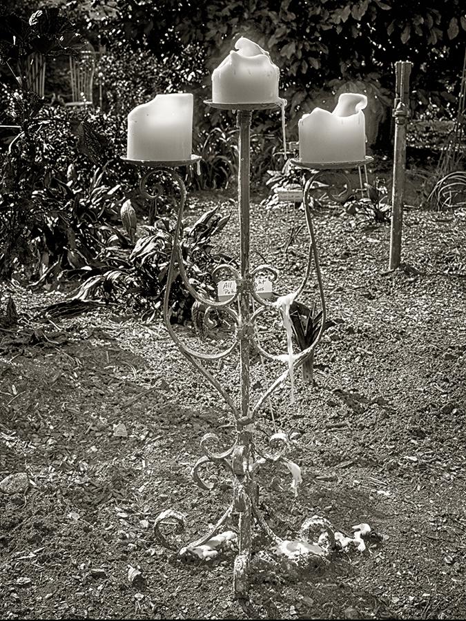Garden of Candlelight