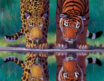 Big Cat Reflections