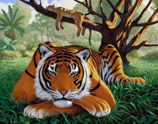 Big Cats Resting