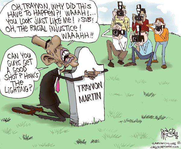 trayvon cartoon