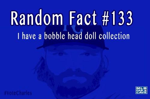 fact 133
