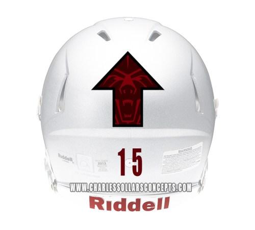 bear up helmet