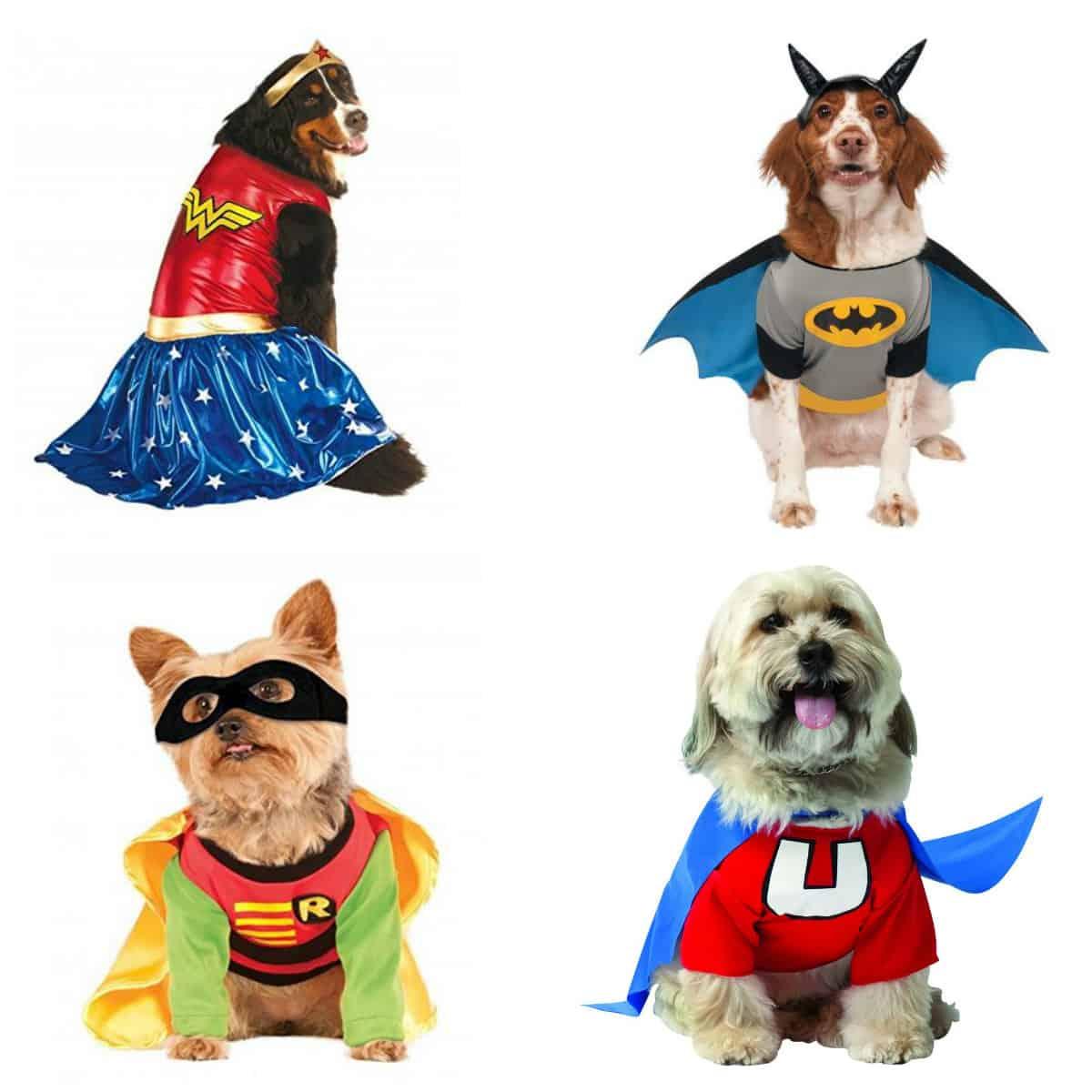 Twenty Awesome Pet Halloween Costumes • Charleston Crafted
