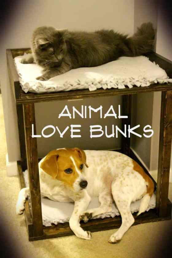 Pet Bed Love Bunks - Charleston Crafted