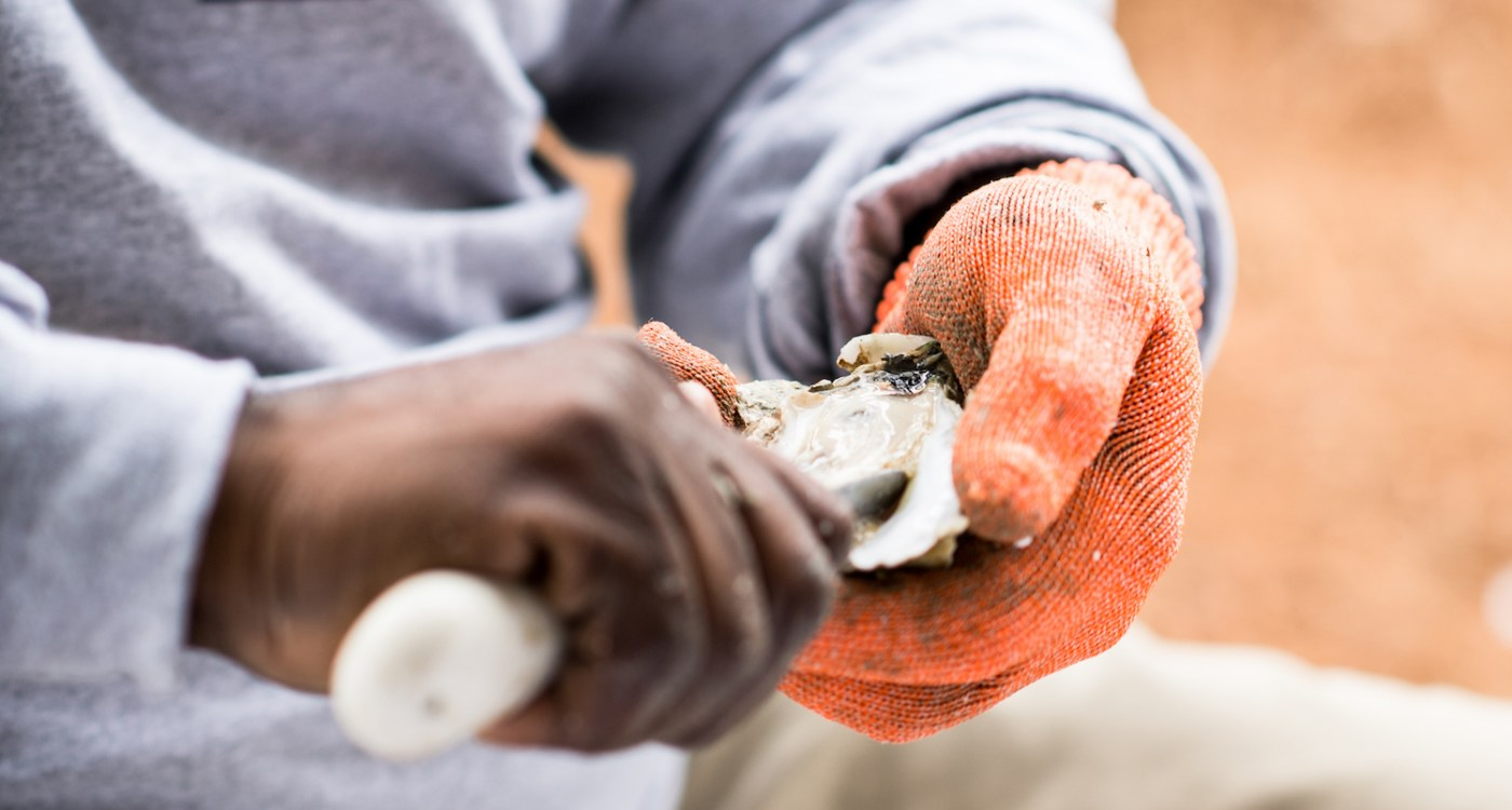 Where + Wear: Lowcountry Oyster Roast