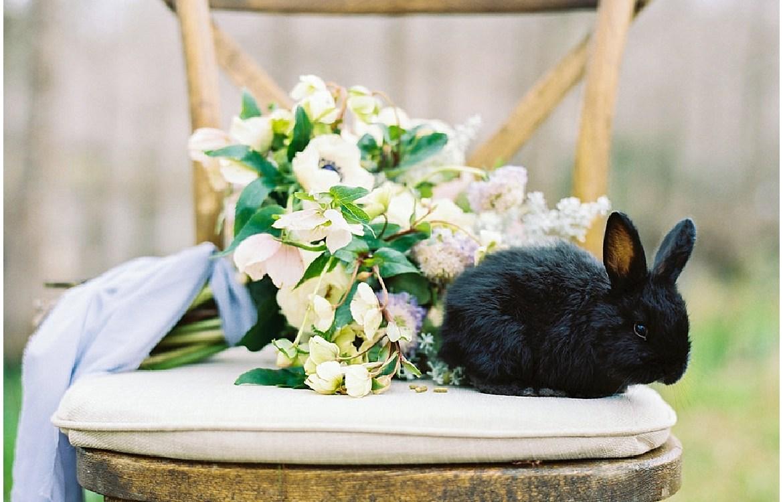 Charleston-Wedding-Guide_0396.jpg