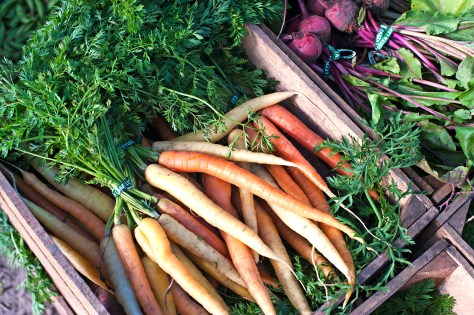 """FRESH & SEASONAL: Charleston embraced """"farm to table"""" long before the popular term was coined by modern """"foodies"""" - come taste our flavors!"""