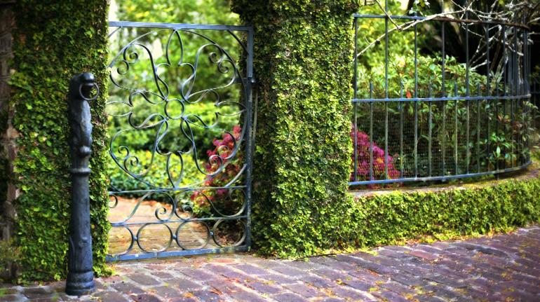 A City Set in a Garden