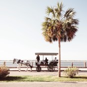 30 Things We Love About Charleston