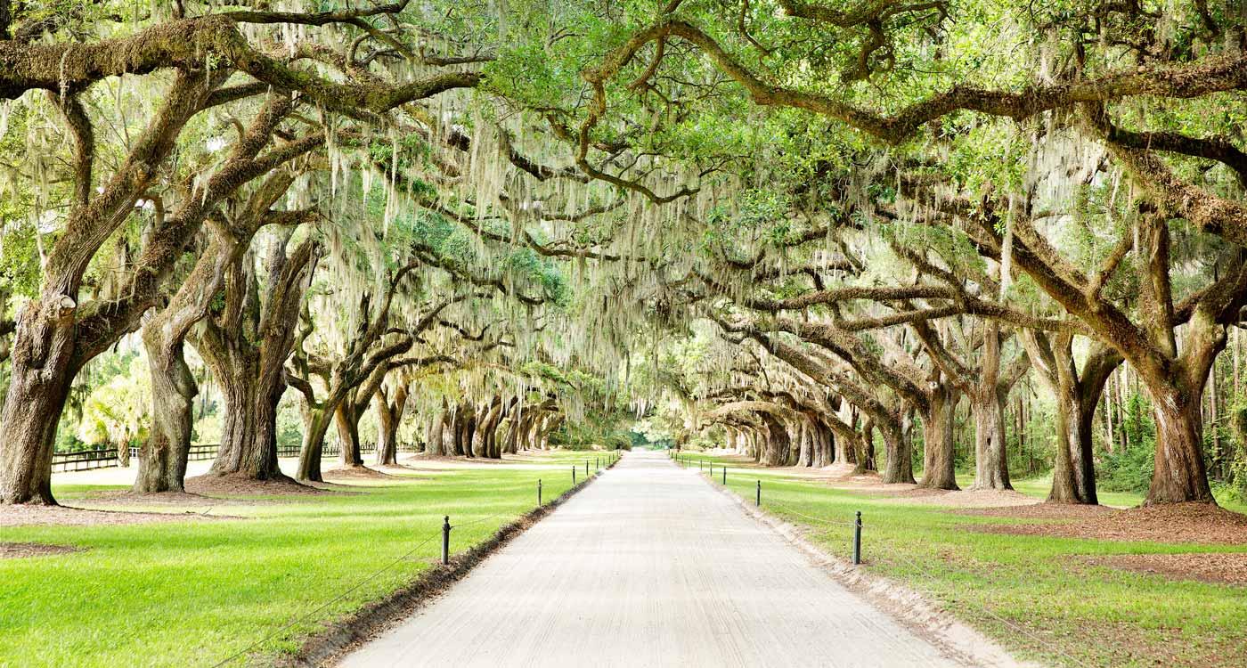 Quiz: Name That Charleston Landmark