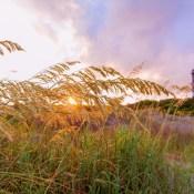 The 9 Best Sunset Spots in Charleston