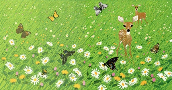 Bambi in the Field   Creatures Wild and Tame   Charley Harper Prints   For Sale