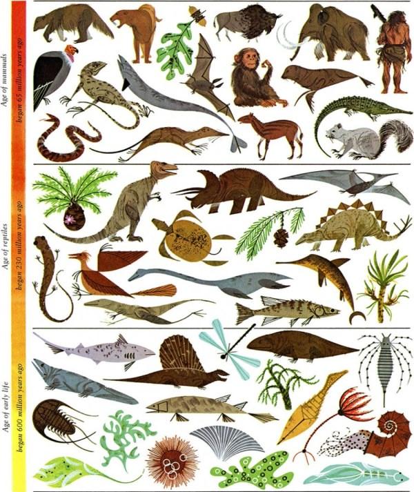 Evolution Mosaic | Charley Harper Prints | For Sale