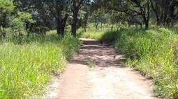 My favorite farm road!