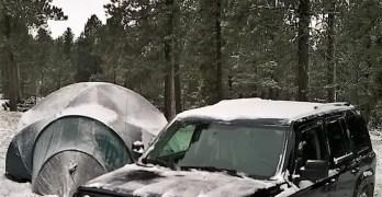 Wyoming Snow Turkeys