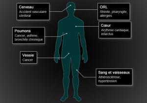 corps-humain[1]