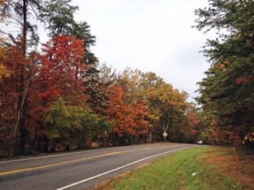 charlottesville fall color