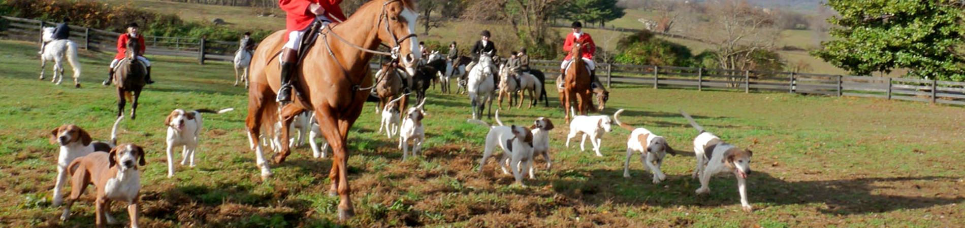 HorseHounds_450px