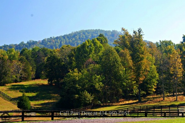 409-Cook-Mountain-Dr-Brightwood-VA-22715-Article-11