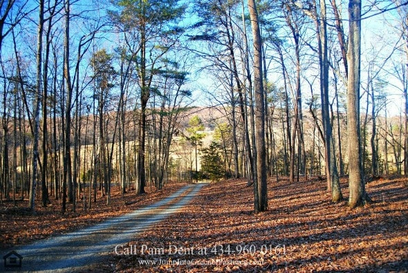 Country Property in Central VA