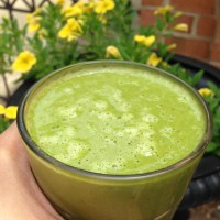 Replenishing Apricot Green Smoothie