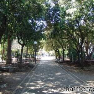 Viale alberato villa comunale di Chiaja