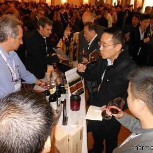 Degustazione di vini campani