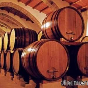 Botti ricolme di buon vino Doc campano