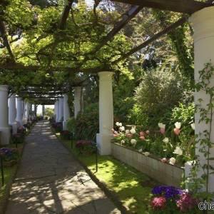 Il giardino della villa