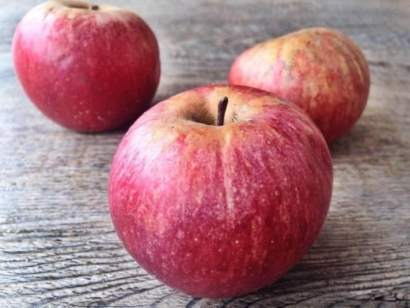 sagra della mela annurca