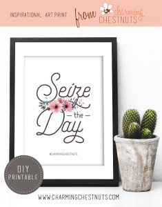 Seize the day – Printable inspirational quote