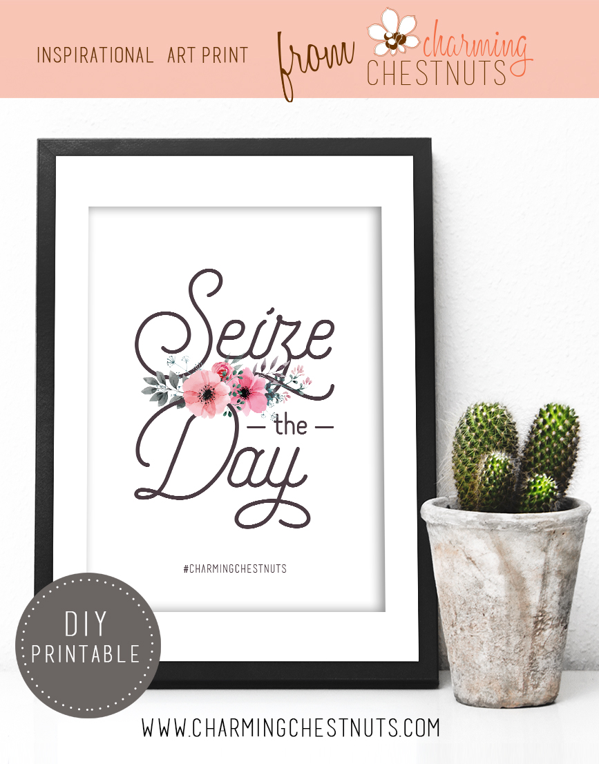 Seize the day - Printable Inspirational quote from Charming Chestnuts