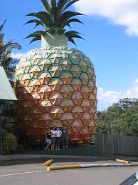 Big Pineapple tourism Australia