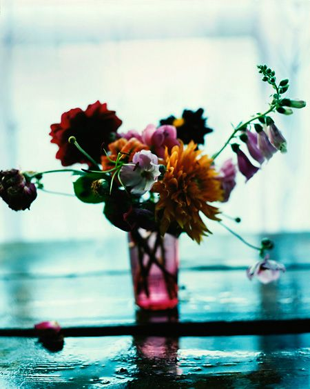 Blumen aus der Serie 59 buketter från min trädgård - © Denis Grünstein