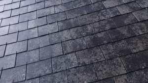 charpentier---couvreur-nettoyage-de-toit