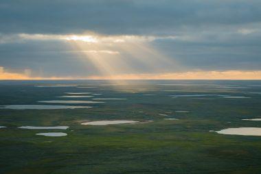 Sun over the Yamal tundra