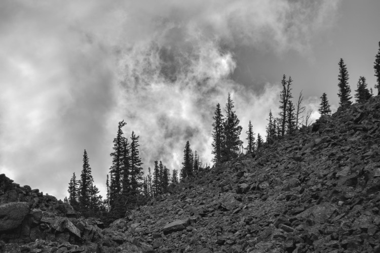 Yellowstone 2014 080