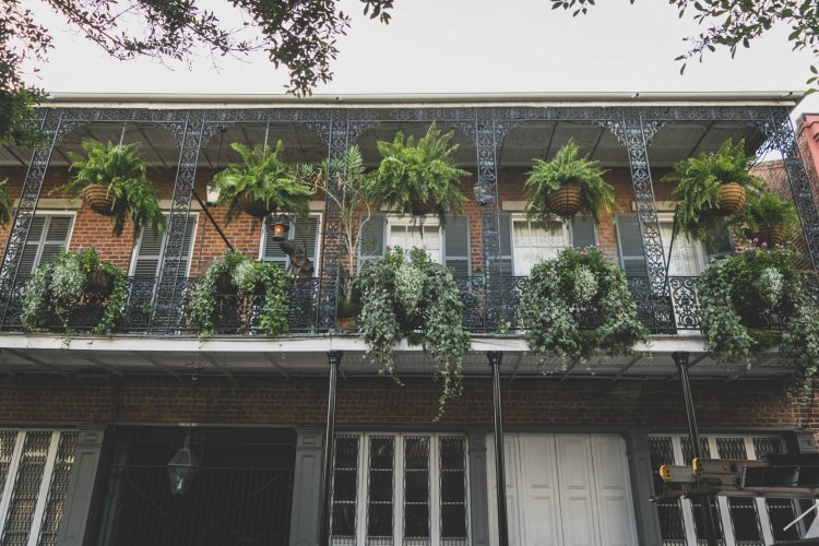 Five Things I Loved in New Orleans | These are things to experience in New Orleans whether you try to or not. The food, the alcohol, the culture, and more. All uniquely New Orleans. | Chasing Departures | #neworleans #whattodoinneworleans #louisiana #southernus #south #frenchquarter