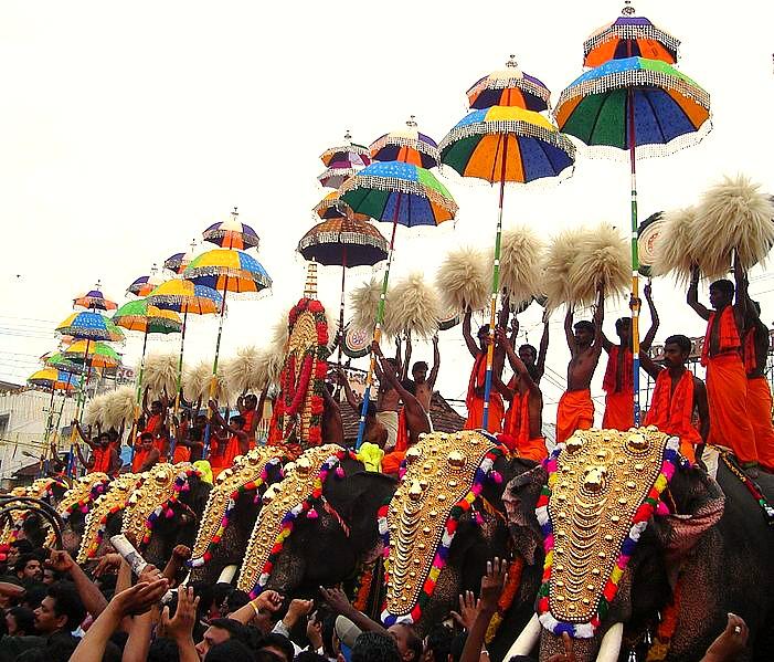 elephant festival india asia