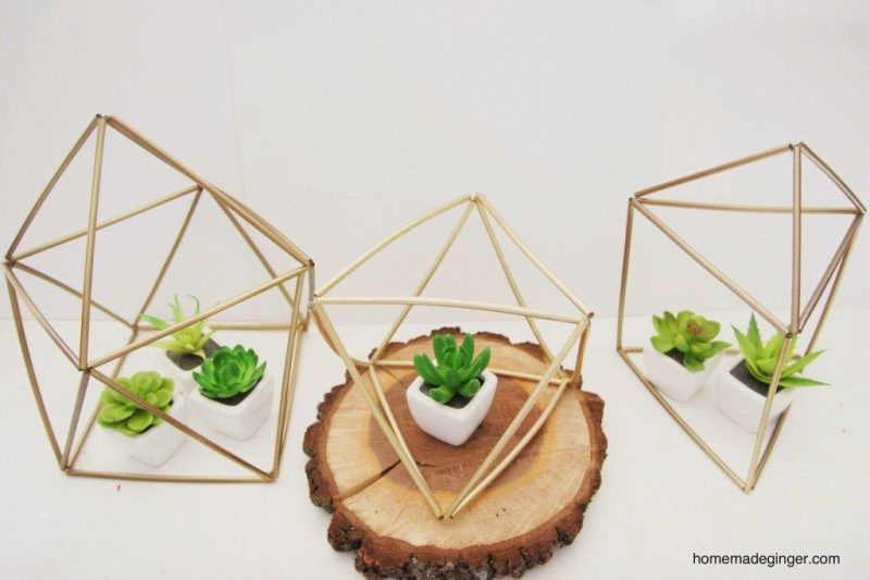 Geometrically-shaped straws encasing small succulents.