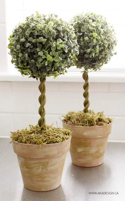 Two homemade topiary trees.