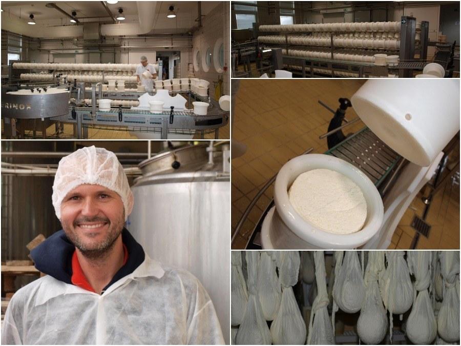 cheese factory at pag island.jpg