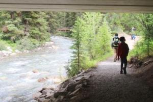Johnston creek 2