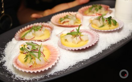 Bay scallop poached & custard With lime, radish and lovage