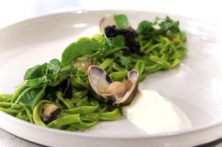 Guitara Noodles – aromatic herbs, clams, lemon balm, burrata puree