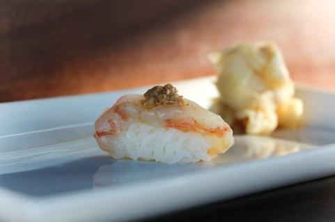 Jumbo Sea Shrimp & Brain