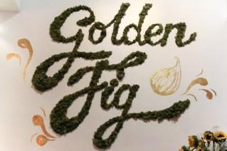 GoldenFig-7